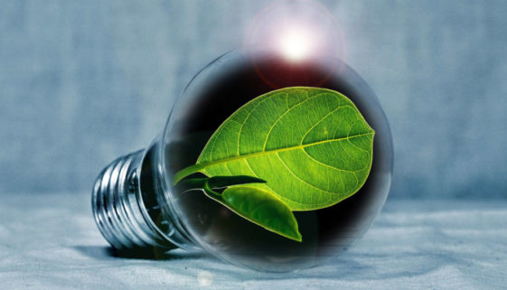 Free energy saving LED lightbulbs from Utility Warehouse are good for the environment